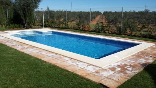 Precio construir piscina piscinas con palets with precio for Que precio tiene hacer una piscina